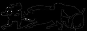 Logo Foculus